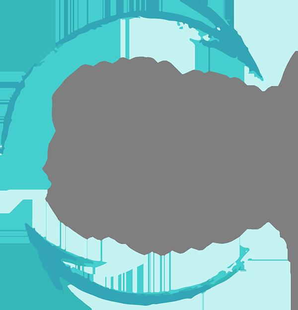Women's Justice Institute